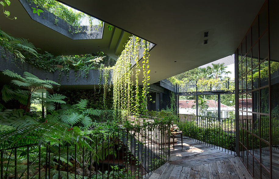 Chang Architects Cornwall Gardens folliage