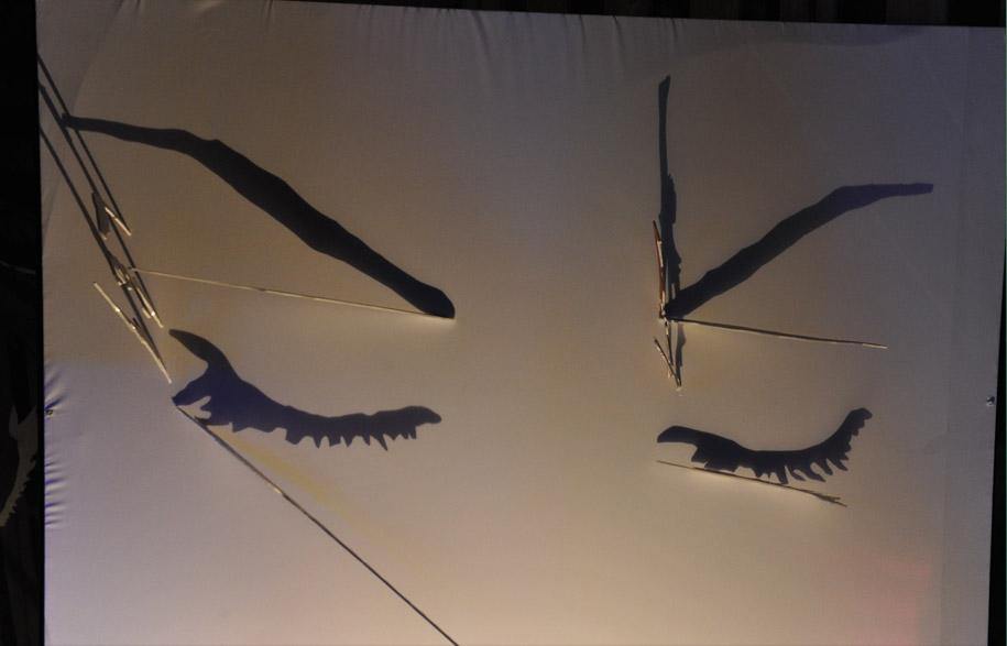 Dimitrina-Jegova's-shadow-painting