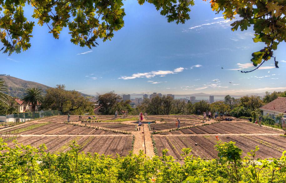 Oranjezicht-City-Farm