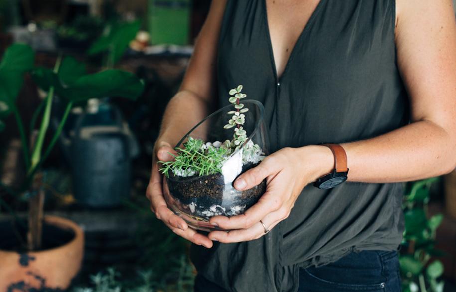The Borrowed Nursery | Habitus Living
